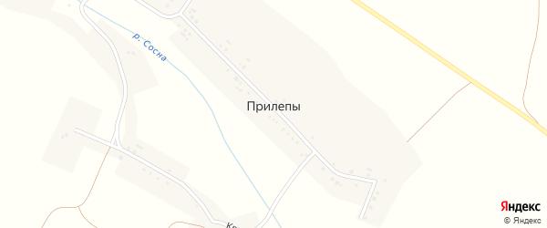 Красная улица на карте села Прилепы с номерами домов