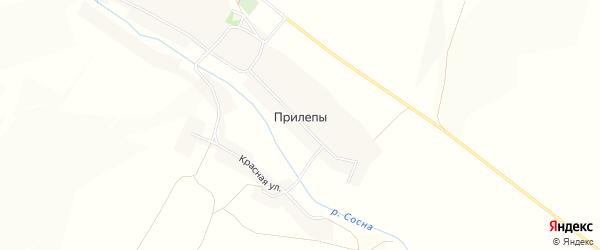 Карта села Прилепы в Белгородской области с улицами и номерами домов