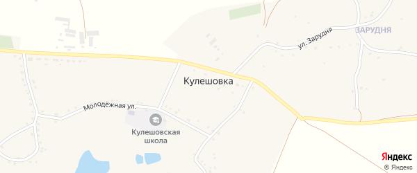 Улица Зарудня на карте села Кулешовки с номерами домов