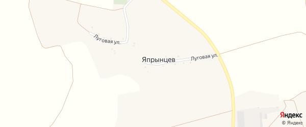 Луговая улица на карте хутора Япрынцева с номерами домов