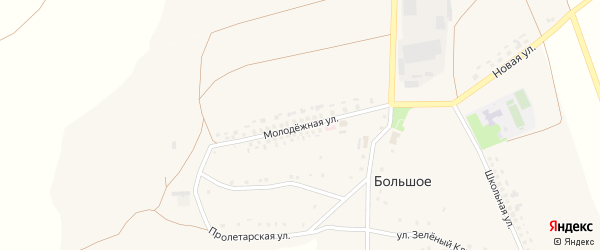 Молодежная улица на карте Большого села с номерами домов