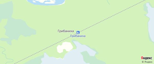 Карта железнодорожного разъезда Грибанихи в Архангельской области с улицами и номерами домов