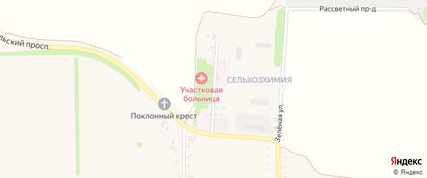 Зеленая улица на карте Роговатого села с номерами домов