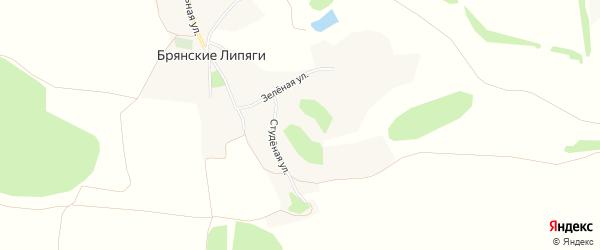 Карта хутора Брянские Липяги в Белгородской области с улицами и номерами домов