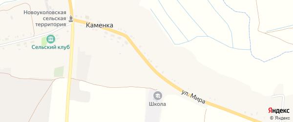 Улица Мира на карте села Каменки с номерами домов