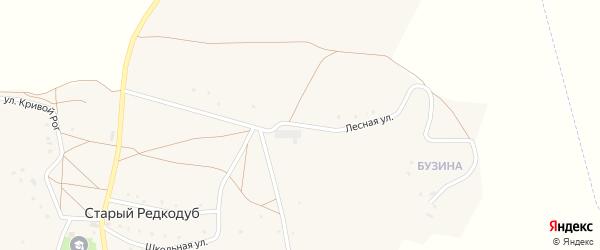 Лесная улица на карте хутора Старого Редкодуба с номерами домов