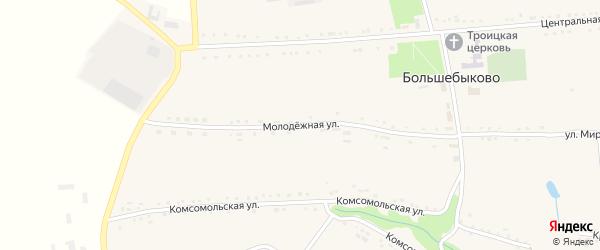 Молодежная улица на карте села Большебыково с номерами домов