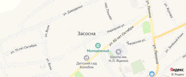Народная улица на карте села Засосны с номерами домов