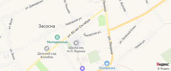 Заводская улица на карте села Засосны с номерами домов