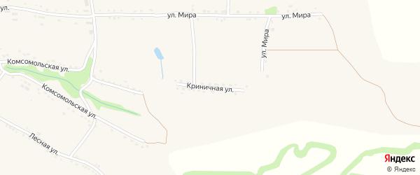 Криничная улица на карте села Большебыково с номерами домов