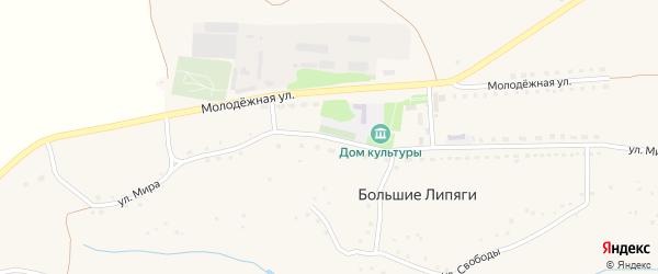 Улица Мира на карте села Большие Липяги с номерами домов