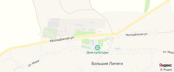 Молодежная улица на карте села Большие Липяги с номерами домов