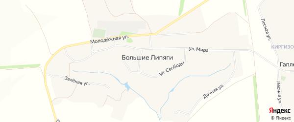 Карта села Большие Липяги в Белгородской области с улицами и номерами домов