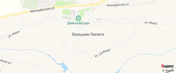 Дачная улица на карте села Большие Липяги с номерами домов