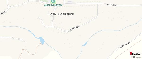 Улица Свободы на карте села Большие Липяги с номерами домов