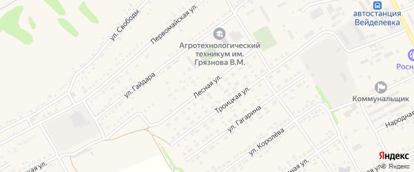 Лесная улица на карте поселка Вейделевки с номерами домов