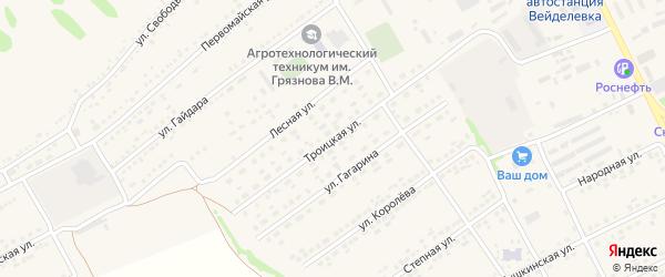 Троицкая улица на карте поселка Вейделевки с номерами домов