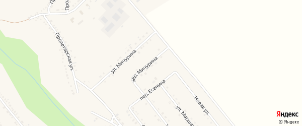 Переулок Мичурина на карте поселка Вейделевки с номерами домов