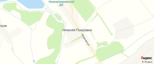 Карта села Нижней Покровки в Белгородской области с улицами и номерами домов