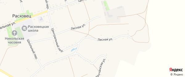 Лесная улица на карте села Расховца с номерами домов