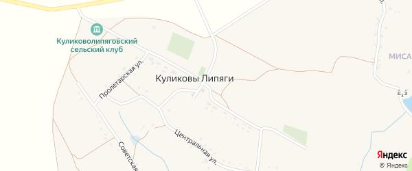 Пролетарская улица на карте села Куликовы Липяги с номерами домов
