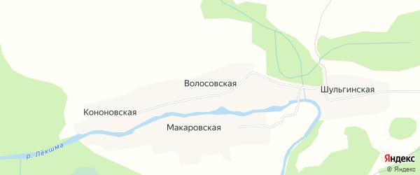 Карта Волосовской деревни в Архангельской области с улицами и номерами домов