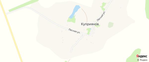 Лесная улица на карте хутора Куприянова с номерами домов