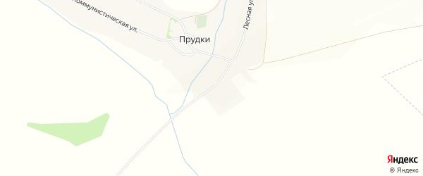 Карта села Прудки в Белгородской области с улицами и номерами домов