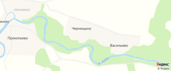 Карта деревни Черницыно в Архангельской области с улицами и номерами домов