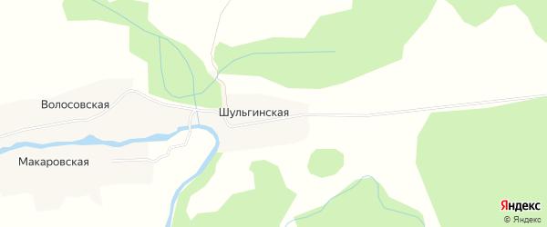 Карта Шульгинской деревни в Архангельской области с улицами и номерами домов