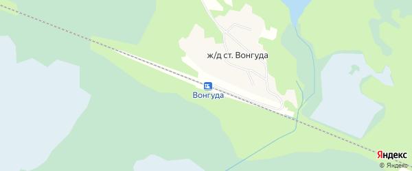 Карта железнодорожной станции Вонгуды в Архангельской области с улицами и номерами домов