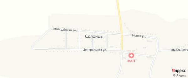 Центральная улица на карте села Солонцы с номерами домов