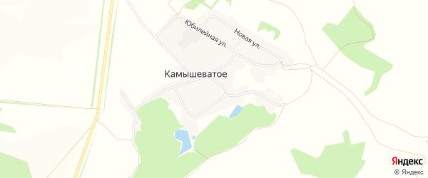Карта Камышеватого села в Белгородской области с улицами и номерами домов