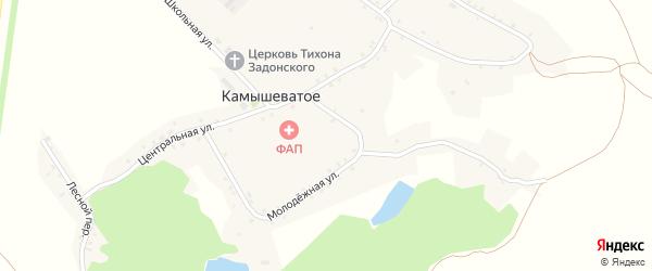 Молодежная улица на карте Камышеватого села с номерами домов