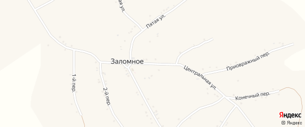 Центральная улица на карте Заломного села с номерами домов