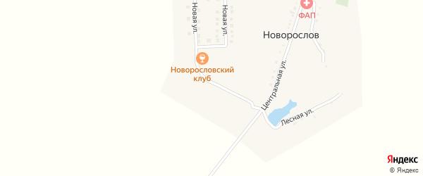 Луговая улица на карте хутора Новорослова с номерами домов