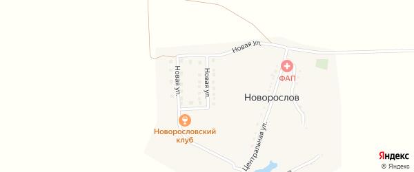 Новая улица на карте хутора Новорослова с номерами домов