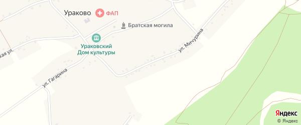 Улица Мичурина на карте села Ураково с номерами домов
