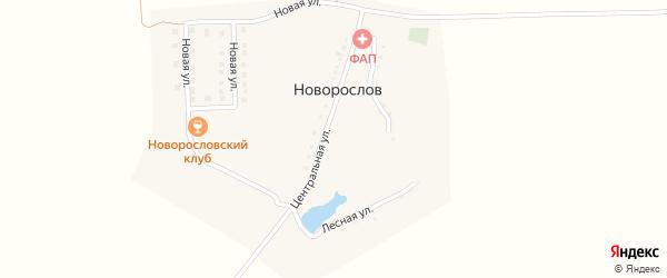 Центральная улица на карте хутора Новорослова с номерами домов