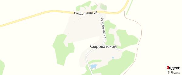 Раздольная улица на карте Сыроватского хутора с номерами домов
