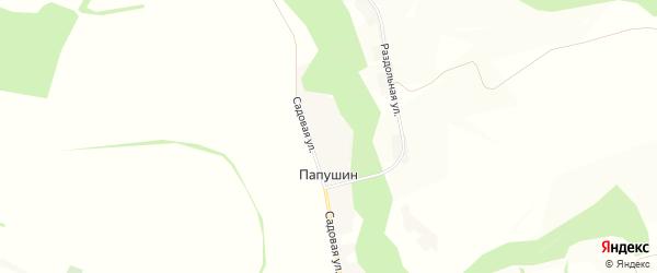 Карта хутора Папушина в Белгородской области с улицами и номерами домов