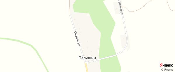 Раздольная улица на карте хутора Папушина с номерами домов
