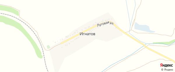 Луговая улица на карте хутора Игнатова с номерами домов