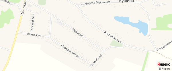 Южная улица на карте села Кущино с номерами домов