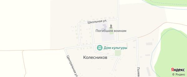 Школьная улица на карте хутора Колесникова с номерами домов