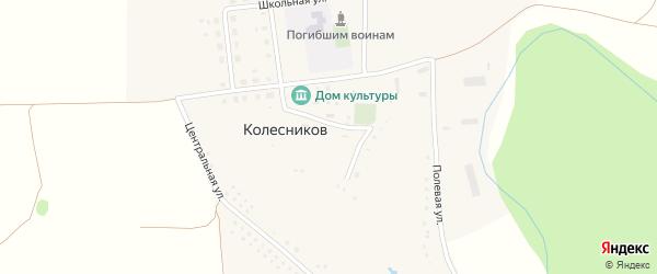 Садовая улица на карте хутора Колесникова с номерами домов