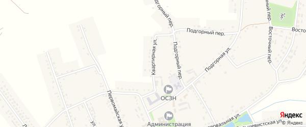 Квартирная улица на карте Красного села с номерами домов