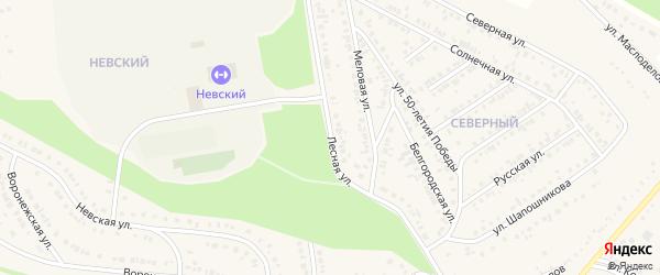 Лесная улица на карте села Ковалево с номерами домов