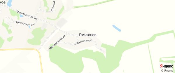 Карта хутора Гамаюнова в Белгородской области с улицами и номерами домов