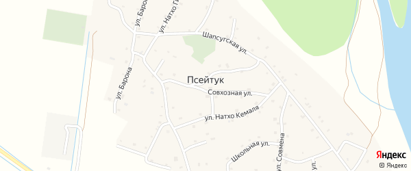 Виноградная улица на карте аула Псейтука с номерами домов